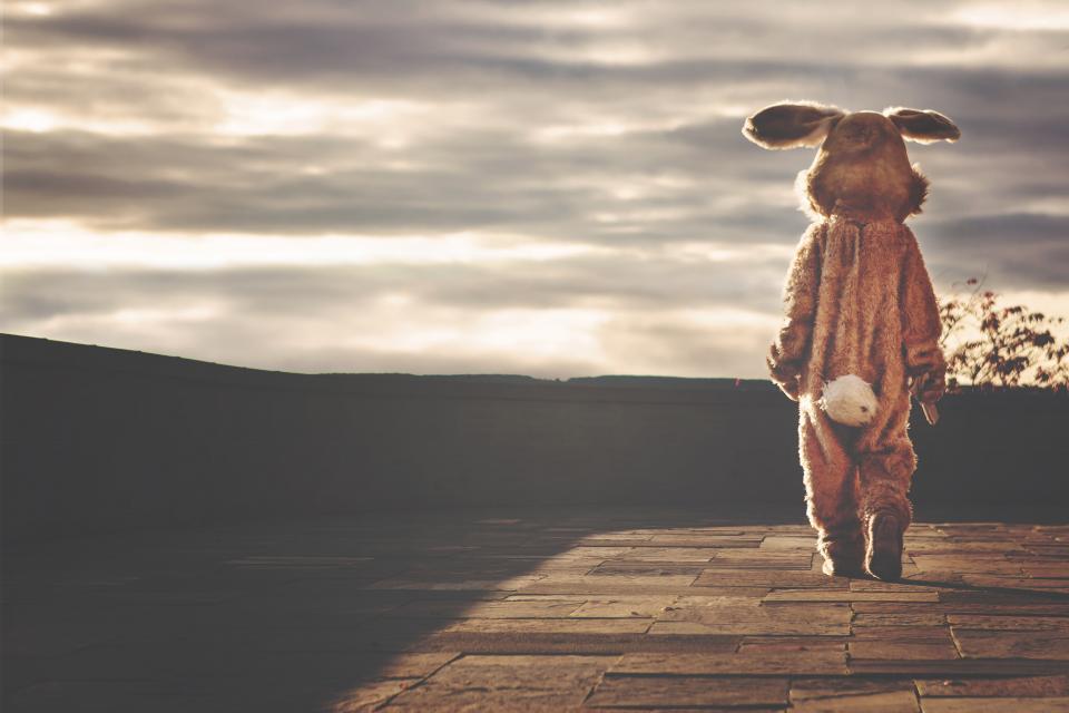 กระต่าย อีสเตอร์